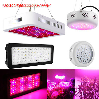 600W 900W 1000W LED Grow Light Full Spectrum Lamp for Greenhouse Indoor Plants