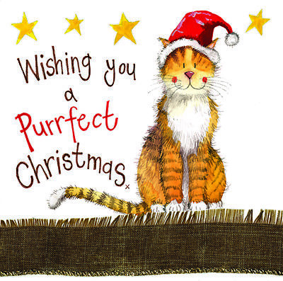 Alex Clark Claws Cat Funny Glitter Sparkle Christmas Card Humorous Greetings