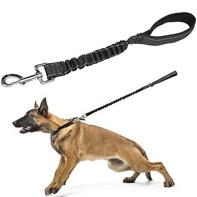 35cm Anti Shock Dog/Puppy Lead Training/Walking Strong Leash Pull/Extend/Absorb