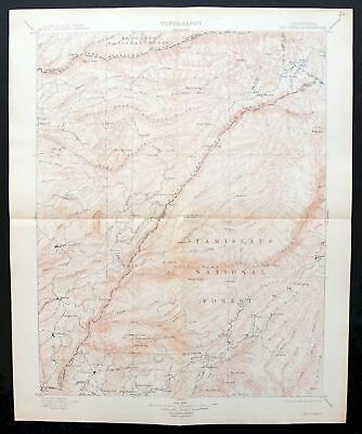1901 Big Trees California Phoenix Lake-Cedar Ridge Arnold Antique USGS Topo Map