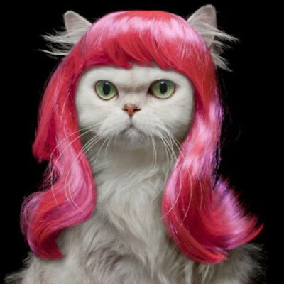 Long Synthetic Female Pet Wigs Dog Cat Hair Costumes Rose red Small Size