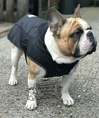 Waterproof Dog Coat Danish Design 2 n 1 Use over Harness Black French Bulldog