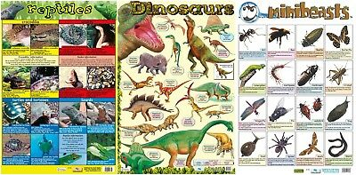 Reptiles + Dinosaurs + Minibeasts - 3 posters  / A2