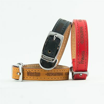 Dog Collars | Ancol Personalised Dog Puppy Collar | Heritage Leather Leads Leash