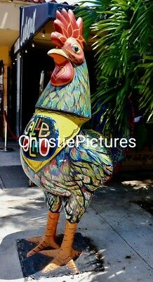 Art Digital Picture Image BEAUTIFUL ROOSTER STATUE PHOTO Chistie Pictures
