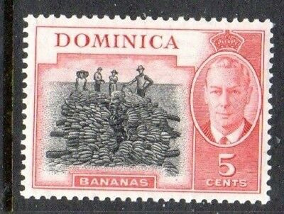 1951 DOMINICA 5c bananas SG125 mint unhinged