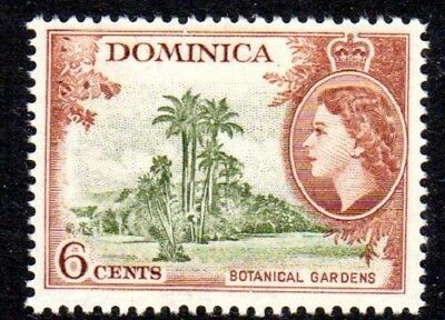 1954-62 DOMINICA 6c Botanical Gardens SG148 mint unhinged