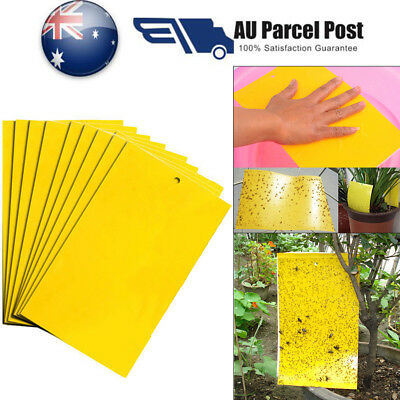 5~100x Yellow Sticky Glue paper Insect Trap Catcher Killer Fly Aphids Wasp Lot