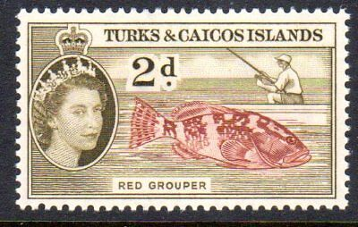 1957 TURKS & CAICOS ISLANDS 2d red grouper SG239 mint very light hinged