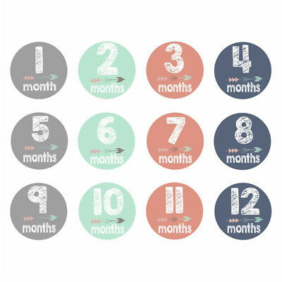 Baby Infant Monthly Photograph Stickers Month 1-12 Milestone Waterproof Stickers