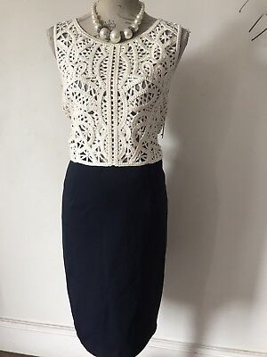 Phase Eight Beautiful Lace Detail Dress Mother Of The Bride Nwt Size 16