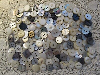 Vintage Lot 200 Mother Of Pearl Shell Buttons