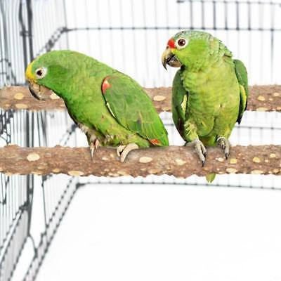 Natural Pepper Branches Rough Surface Bird Cage Gati-way Bird Perches