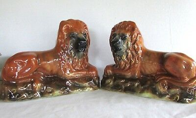Pair of Large 19th Century Staffordshire Lions - Glass Eyes - Victorian Lions
