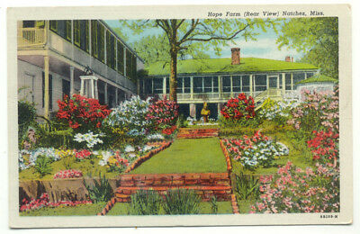 Natchez MS Hope Farm Linen Postcard - Mississippi