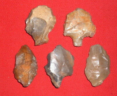 (5) Aterian Nice Early Man Points (30K - 80K BP), Prehistoric African Artifacts