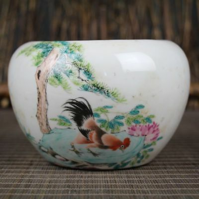 China Dynasty colored glaze Porcelain Painting chicken cock Good luck Pot Jar