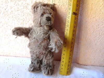 Alter Steiff Zotty Teddy 18cm 50er-60er Jahre ?