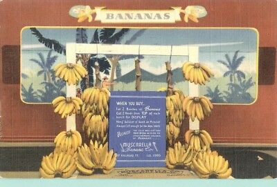 Muscarella Banana Co Rochester NY Place & Time for Bananas Curt Teich Linen PC