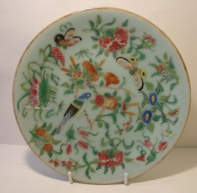 """7.25"""" Chinese Celadon Famille Rose Plate"""