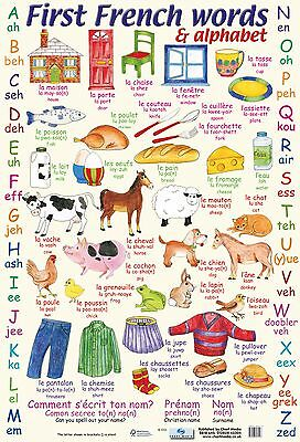 A2 French Words Poster/ educational / learning / language / literacy