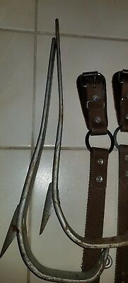Buckingham Tree Pole Climbing Spikes Gaffs 4-93, L/R,straps & guards