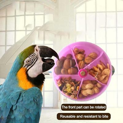 Parrots Pet Treat Hunt Parrot Bird Cage Intelligence Chew Feeder Foraging Toys