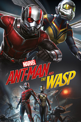 New Maxi Poster Marvel Comic Ant Man And The Wasp Dynamic Heros Movie (279)