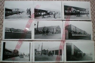 DAILEY BROS CIRCUS /CARNIVAL MIDWAY-B&W- PHOTOS-1949(Set of 9)