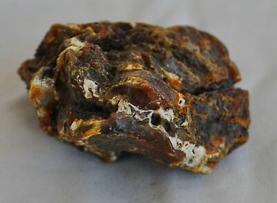 Natural Baltic Amber 80.62gr Honey White Tiger Stone