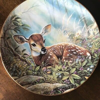 Hamilton Collection 1995 Plate In the Morning Light Fawns Forest Limited Edition