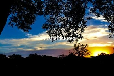 🌈⭐️🌸 Art Digital Photo Image SUNSET Photography, from 🌎ChristiePictures 🌼🌸