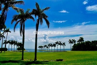 🌈 Art Digital Picture Image Photo Wallpaper SOUTH BEACH Christie Pictures