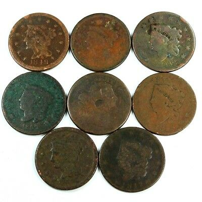 Group Lot of 8 Early U.S. Large Cents - Exact Lot Shown 3024