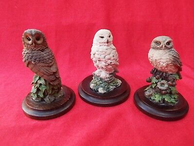 COUNTRY ARTISTS Three Individual Owls Figurines Handpainted