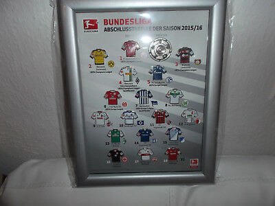 DFL - Pin Collection, Abschlusstabelle - Bundesliga 2015/2016