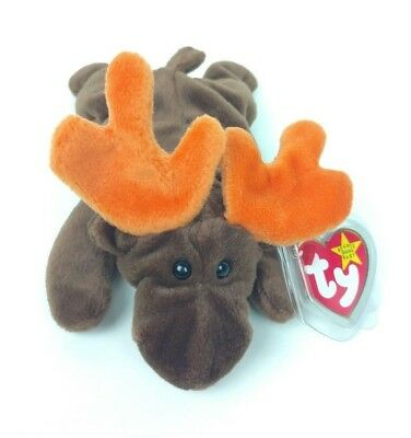 Ty Beanie Babies CHOCOLATE the Moose Tag Encased in Plastic Plush Animal