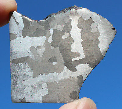 Meteorites - Iron Meteorite 59.1g Polished and Etched Part Slice