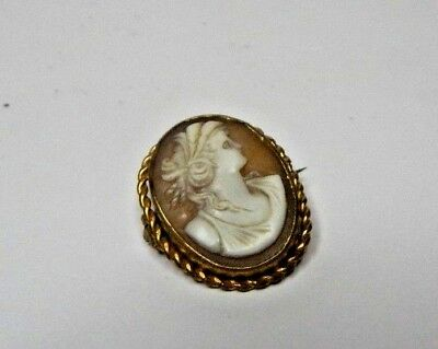 Victorian Hand Carved shell Cameo Brooch Gold Plated rope edge Mount 3 x 2.2cm's