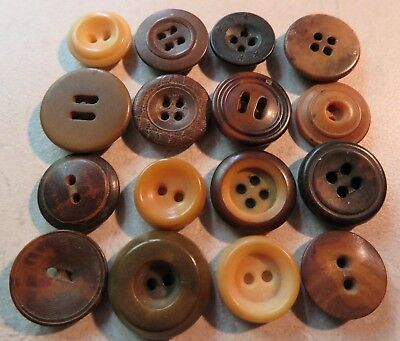 """16 Mixed Antique Vintage Vegetable Ivory Buttons Lot 1/2"""""""