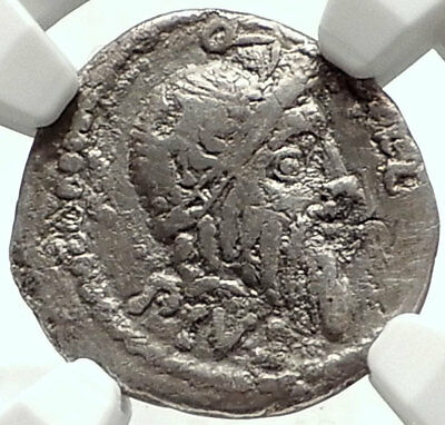 Metellus Scipio Enemy of Julius Caesar 47BC Ancient Silver Roman Coin NGC i68128