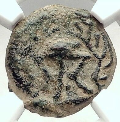 HEROD I the GREAT Jewish King Ancient Biblical Jerusalem Coin TRIPOD NGC i72945
