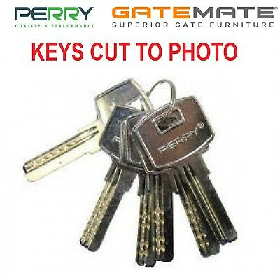 Perry / Gatemate / Concise Gate Lock Key Cutting to Photo