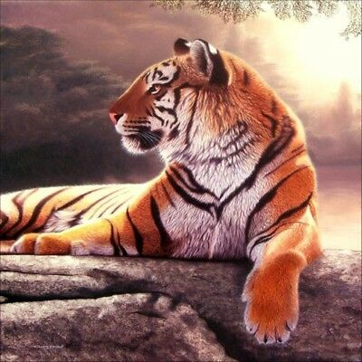 "10X(Full 5D Diy Diamond Painting Cross Stitch ""Tiger"" 3D Embroidery Rhinestone8)"