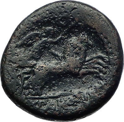 Syracuse in Sicily 212BC Zeus & Nike Horse  Genuine Ancient Greek Coin  i73286