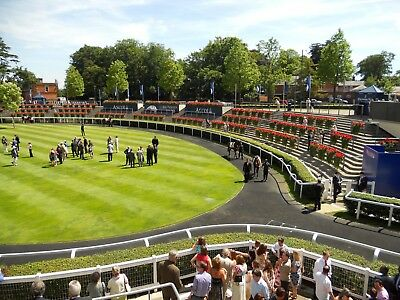 Make Money - Place 77 Horse Racing System for Betfair or Place Betting