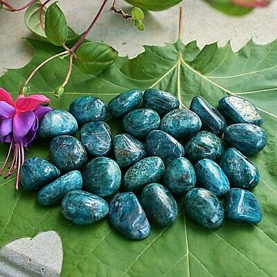 APATITE ONE Blue Tumbled Polished Crystal Stone 6-10gr w/ Healing Property Card