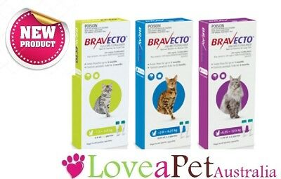 Bravecto Tick Flea 3 Month Spot On For Cats 2 Doses (6 mths treatment) All Sizes
