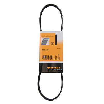 Multi Ribbed Fan Drive Belt - Various Rover, Smart Fortwo, Renault Clio & More
