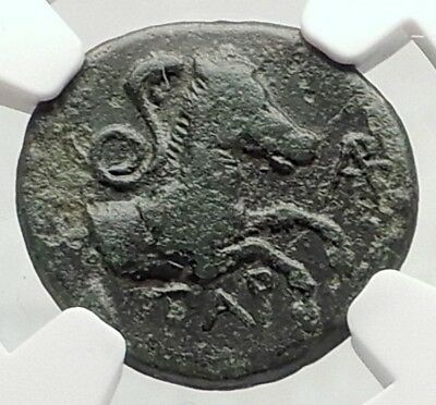 ATARNEOS in MYSIA Authentic Ancient 350BC Greek Coin APOLLO HORSE NGC i73104